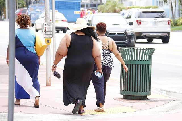 肥満・ダイエットに関する遺伝子検査キット